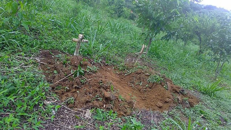 Osvalinda Maria Pereira foi colher maracujá no terreno quando encontrou as duas covas no domingo de manhã