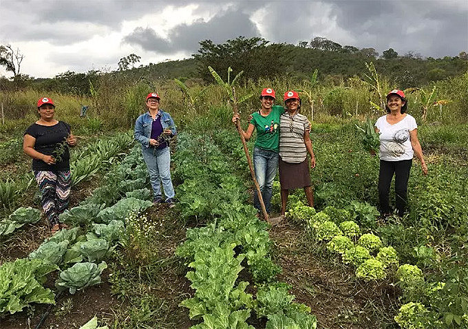 Dia do Agricultor e da Agricultora é celebrado no dia 25 de julho