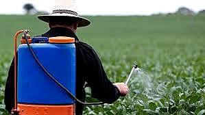 Estudo analisa presença de agrotóxicos na água de abastecimento público de cidades de Santa Catarina