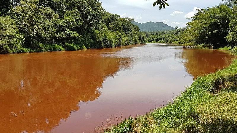 Desde o rompimento da barragem no Córrego do Feijão, de responsabilidade da Vale, o rio Paraopeba foi destruído