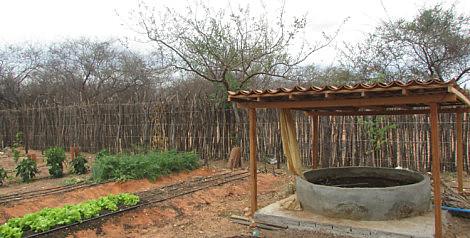 Sistema de tubulação permite que a água utilizada no cotidiano seja reaproveitada para irrigar plantações