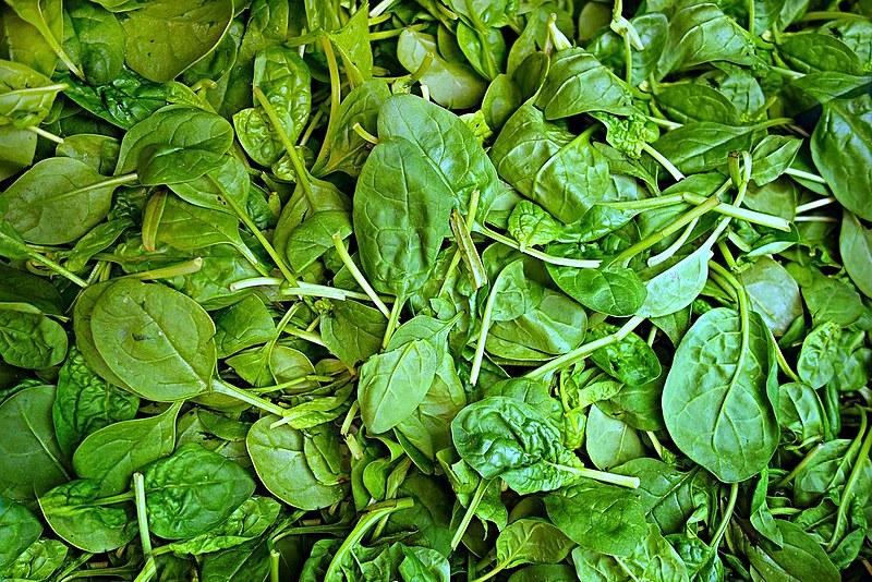 Além de fonte de nutrientes, o alimento também é rico em vitaminas e minerais