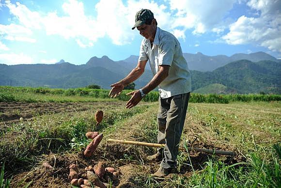 Cortes também afetarão o Programa de Aquisição de Alimentos, o PAA