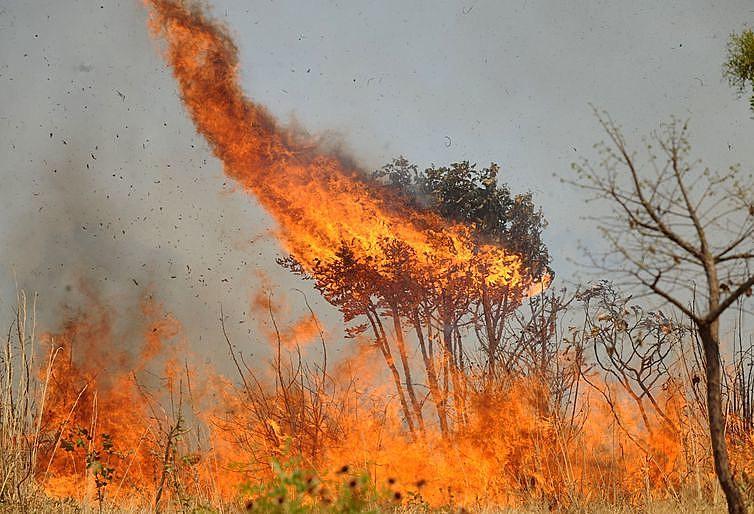São mais de 2 mil focos de queimadas na Amazônia em setembro, segundo o Inpe
