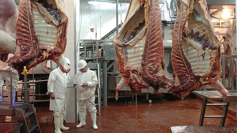 O movimento defende que as empresas envolvidas na Operação Carne Fraca sejam punidas e responsabilizadas