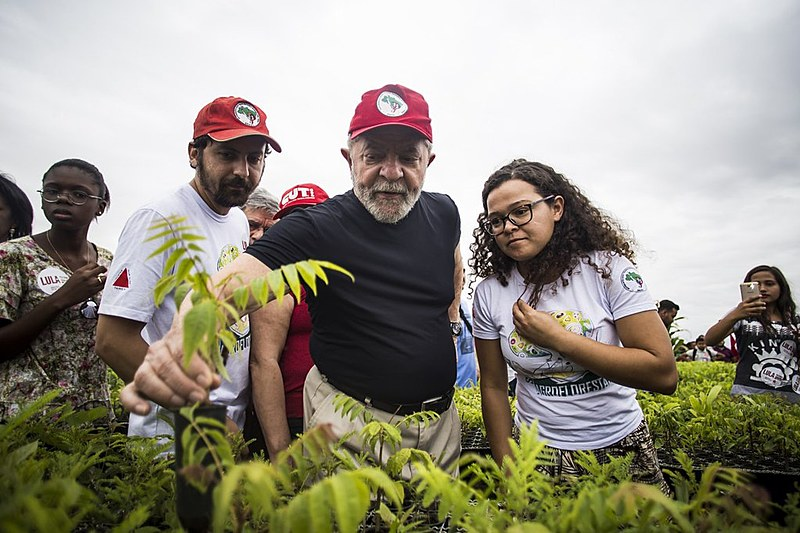 Lula repudiou incentivos públicos à produção de eucalipto como forma de reflorestamento, que acontecem desde a década de 1970.