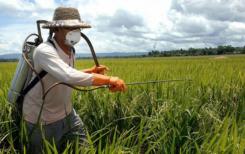 """Agrotóxicos que eram considerados extremamente tóxicos passam a ser chamados de """"moderadamente tóxicos"""""""