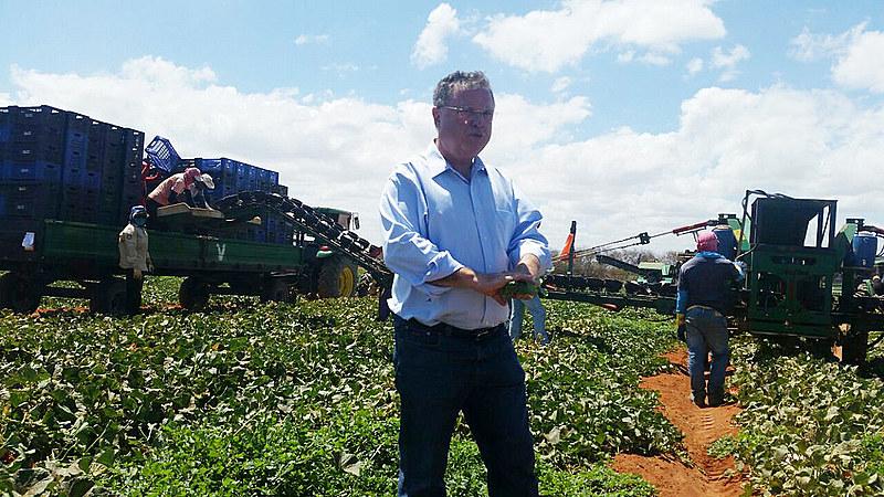 Ministro Blairo Maggi na colheita do melão na fazenda famosa em Icapuí-CE