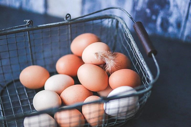"""""""Depois do leite materno, o ovo é o melhor alimento do mundo"""", afirma nutricionista Pâmela Terra."""