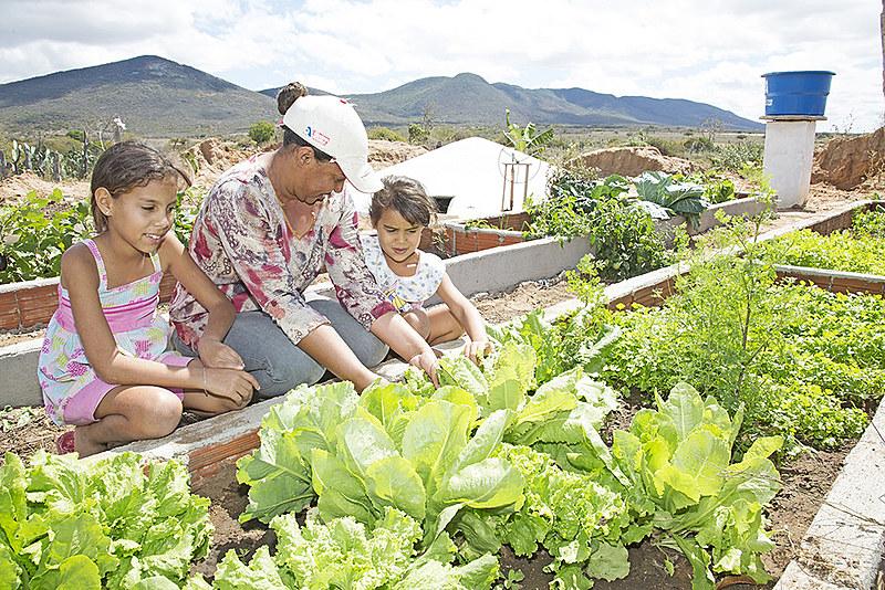 Um dos desafios da Secretaria de Agricultura e Reforma Agrária é a construção do Plano Estadual de Agroecologia e Produção Orgânica