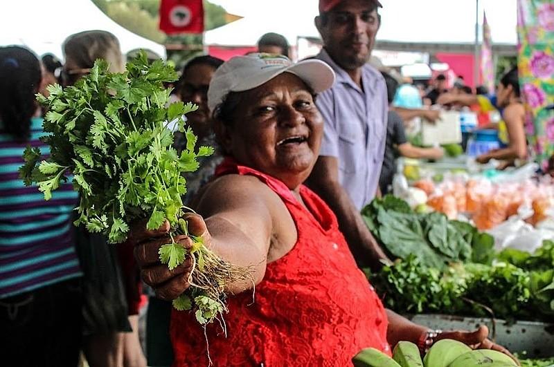 Lei determina que estados e municípios comprem alimentos vindos da agricultura familiar.