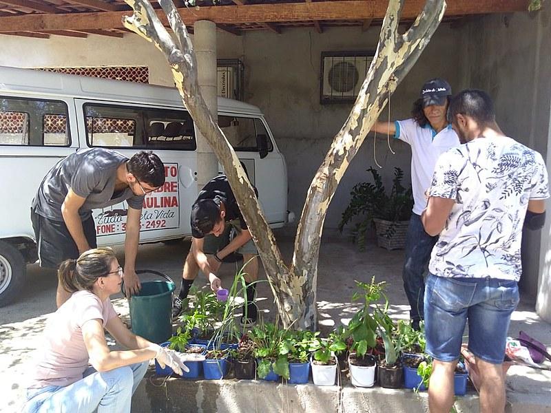 No lançamento, o grupo explicará os passos iniciais para construção do jardim e quais os cuidados necessários em sua manutenção.