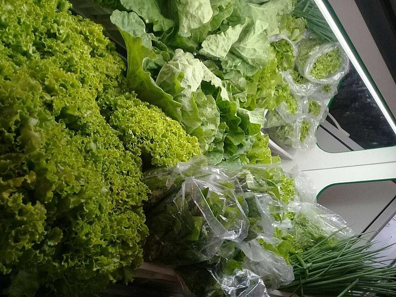 Além de verduras, arroz, feijão, sucos, farinha, doces, frutas e legumes serão vendidos na loja
