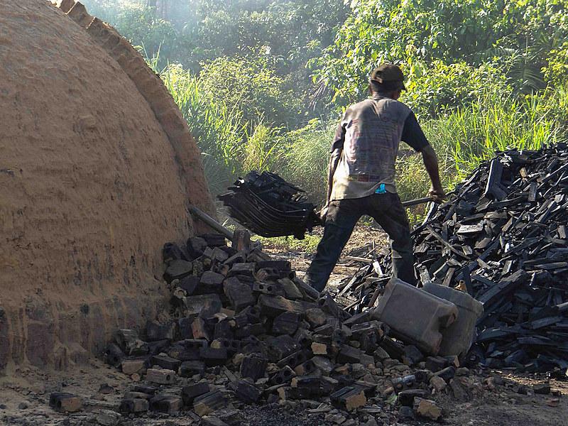 Trabalhador na fabricação de carvão, atividade recorrente na lista de trabalhos análogos à escravidão