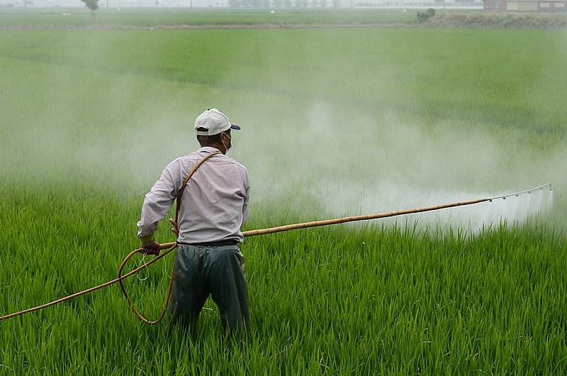 Agricultor pulveriza plantação com herbicida; uso é estimulado pelo agronegócio