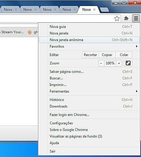 O modo anônimo, disponível em quase todos os navegadores pode ser acessado pelo menu Arquivo > Nova janela anônima