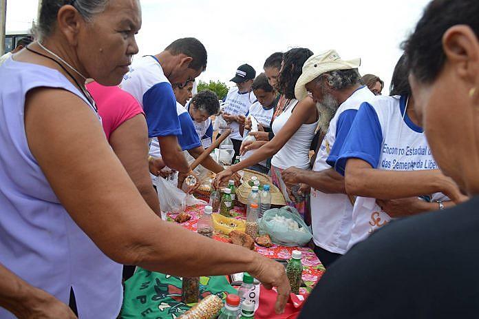 Cada guardião trouxe suas experiências com as casas de sementes e os benefícios que estas trouxeram para suas respectivas comunidades