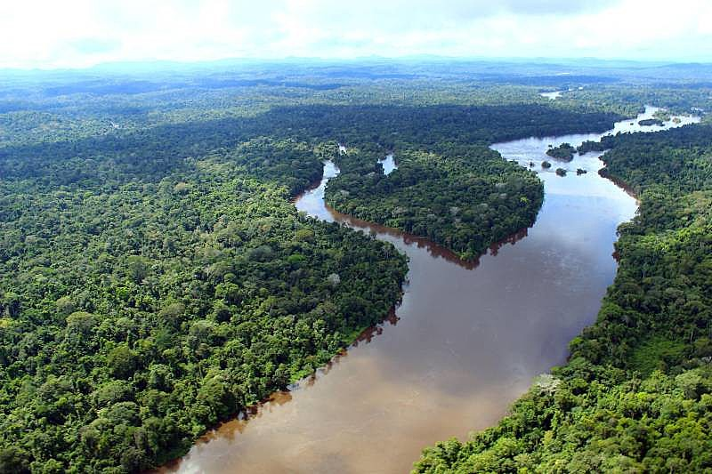 MPF cobra mais de R$ 5 bilhões em indenizações por desmatamento ilegal na Amazônia