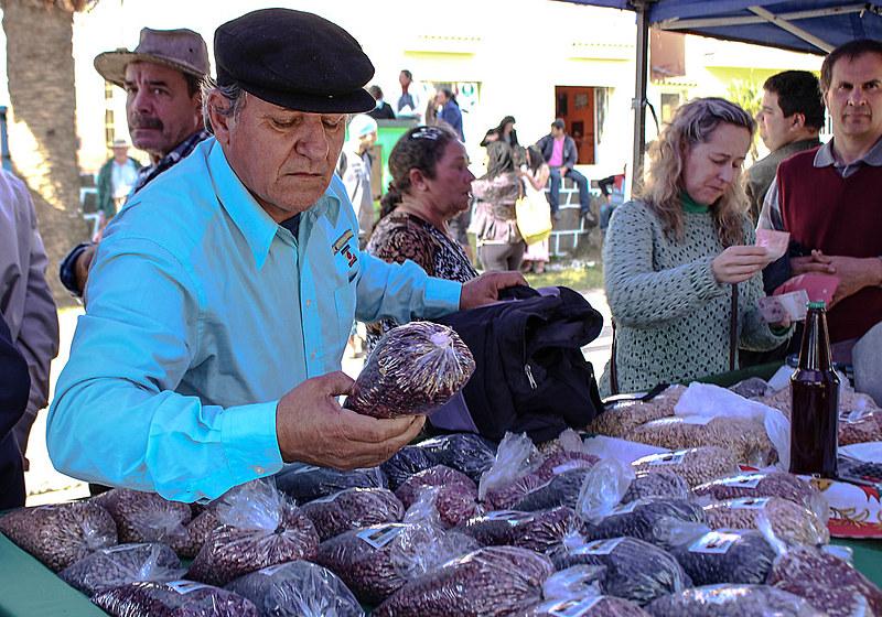 Adão da Silva visita a Feira do Feijão Orgânico da Apecol, que ocorre anualmente no centro de Piratini (RS)