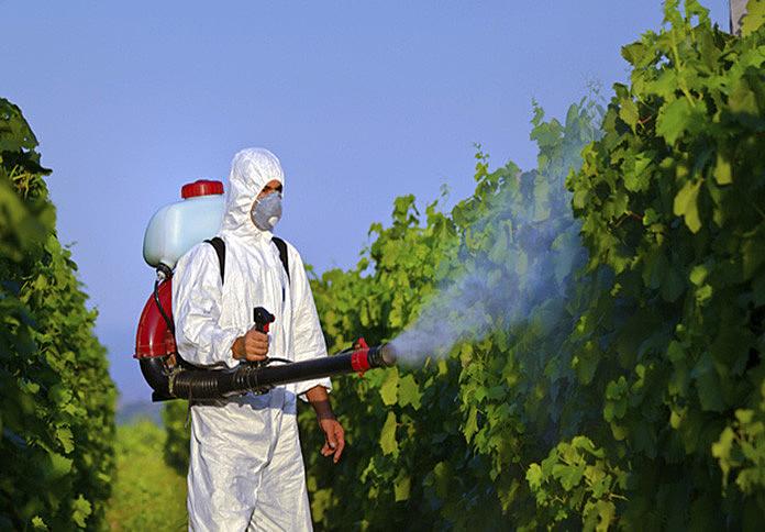Brasil consome 20% de todo o agrotóxico comercializado no mundo