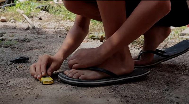 Em 146 amostras de urina de crianças e adolescentes, 100% indicam a presença deresíduos de dois até seis agrotóxicos