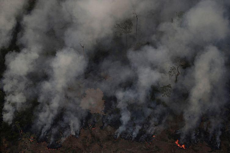 Segundo o Instituto Nacional de Pesquisas Espaciais (Inpe), o Brasil vive a maior onda de queimadas dos últimos cinco anos.