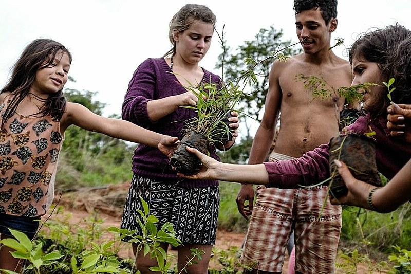 Mutirão ecológico mobiliza voluntários do DF e de outros estados que vieram ajudar na recuperação da área