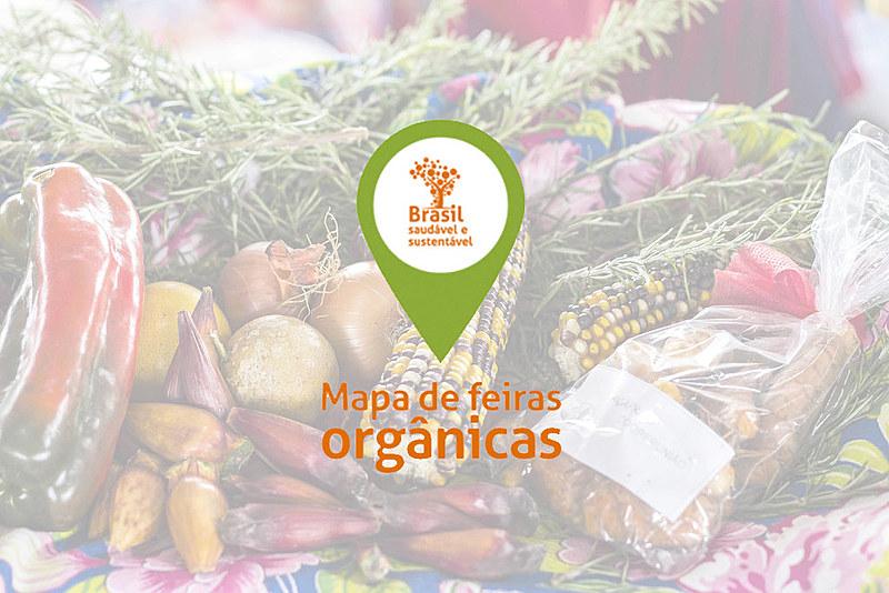 Aplicativo encurta o caminho do consumidor até o produtor e ajuda a colocar comida sem veneno na mesa de casa