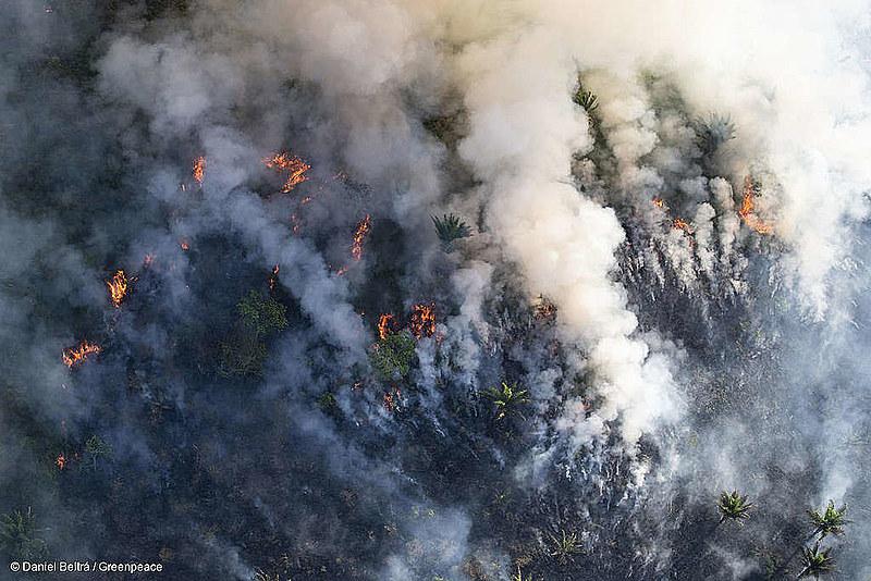 Focos de incêndio na Floresta Amazônica se intensificaram em 2019