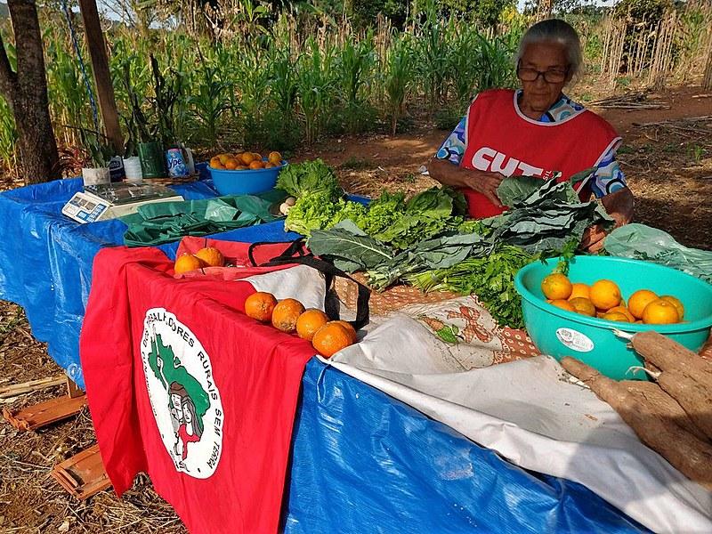 Acampamento fica no bairro Perus e vende alimentos sem agrotóxico através de redes solidárias de consumo
