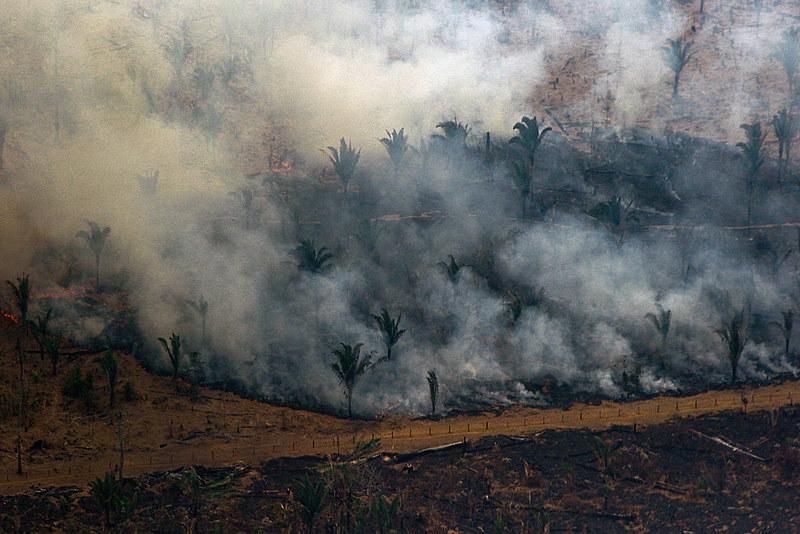 Estudo reúne informações sobre a correlação entre as queimadas e seus efeitos para a saúde na região da Amazônia Legal