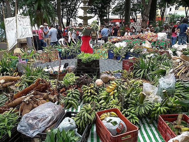 Alimentos producidos por habitantes del Quilombo Campo Grande, en Minas Gerais