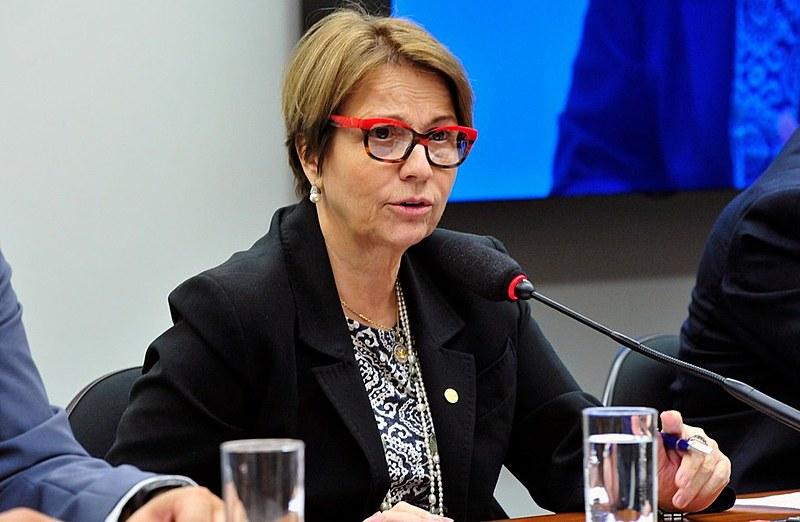 """Deputada Tereza Cristina (DEM-MS) preside atualmente a Frente Parlamentar Agropecuária (FPA), conhecida como """"bancada ruralista"""""""
