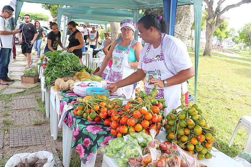A feira agroecológica foi uma iniciativa das mulheres agricultoras para conquistarem autonomia econômica e política