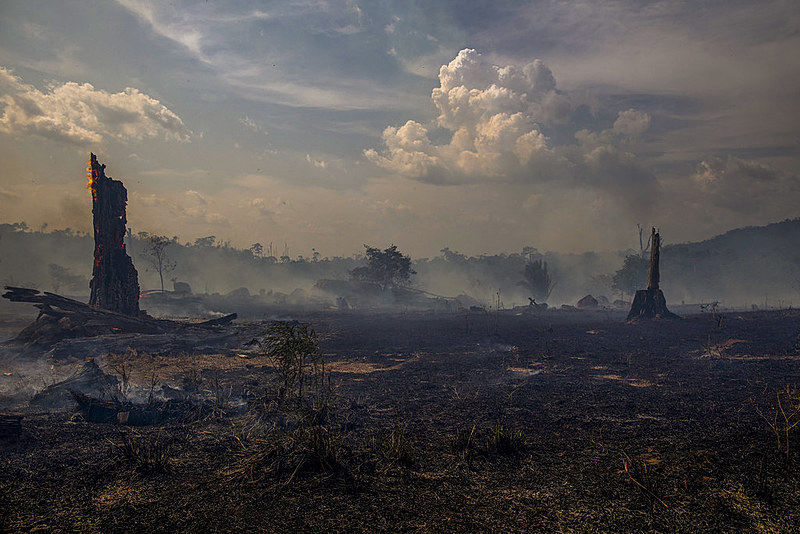 Vista de un área incendiada de la selva amazónica en Altamira, estado de Pará, Brasil, en la cuenca del Amazonas, el 27 de agosto de 2019