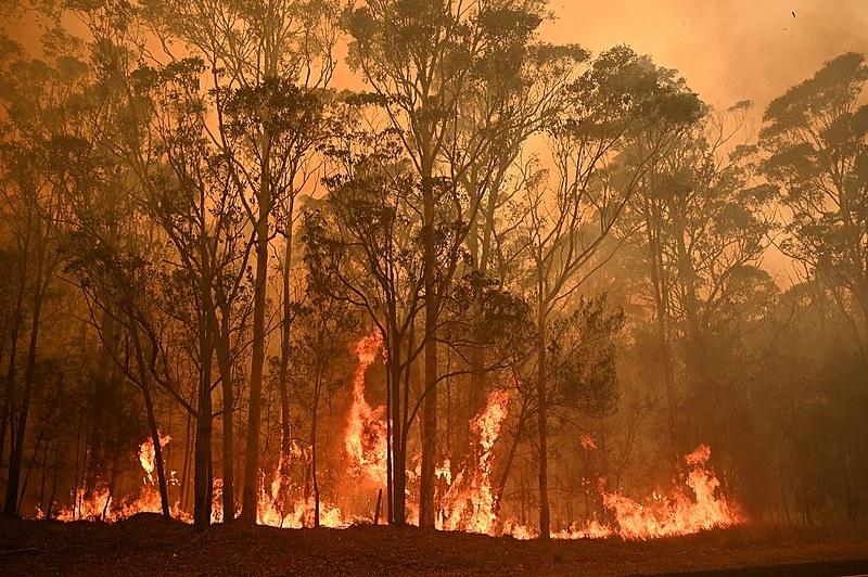 Incêndios na Austrália já atingiram mais de 5 milhões de hectares