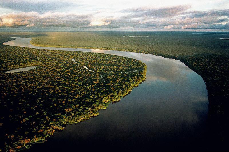 Amazônia brasileira é referência mundial para balanço climático e preocupa atores internacionais