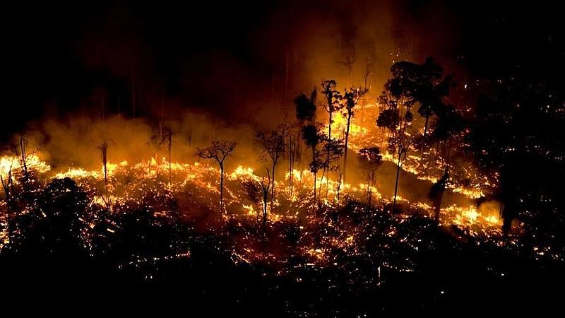 Brasil vive a maior onda de queimadas dos últimos cinco anos
