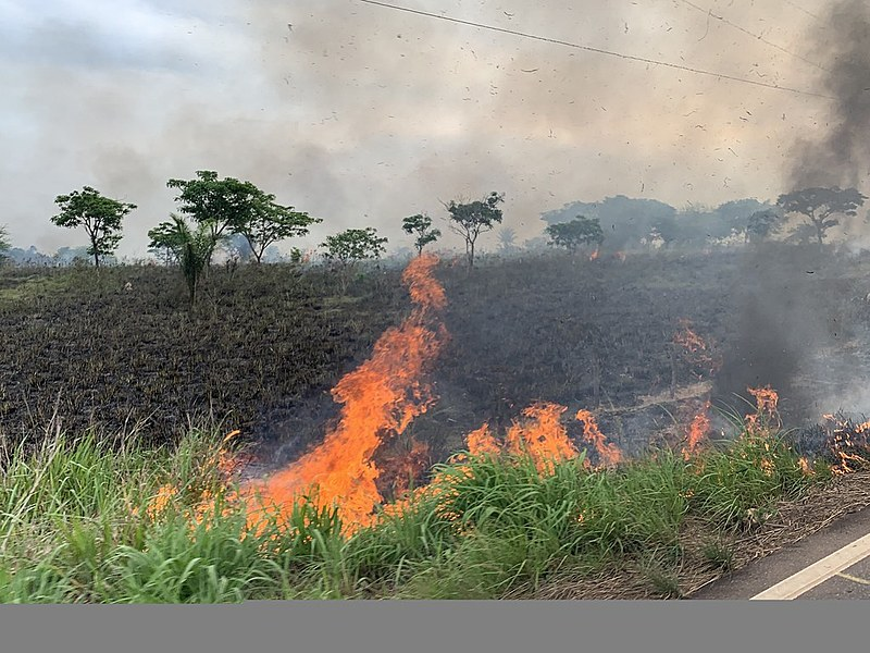 Queimada registrada em 26 de outubro na BR-155, em Eldorado do Carajás, no Pará. Rodovia vai de Marabá até Redenção