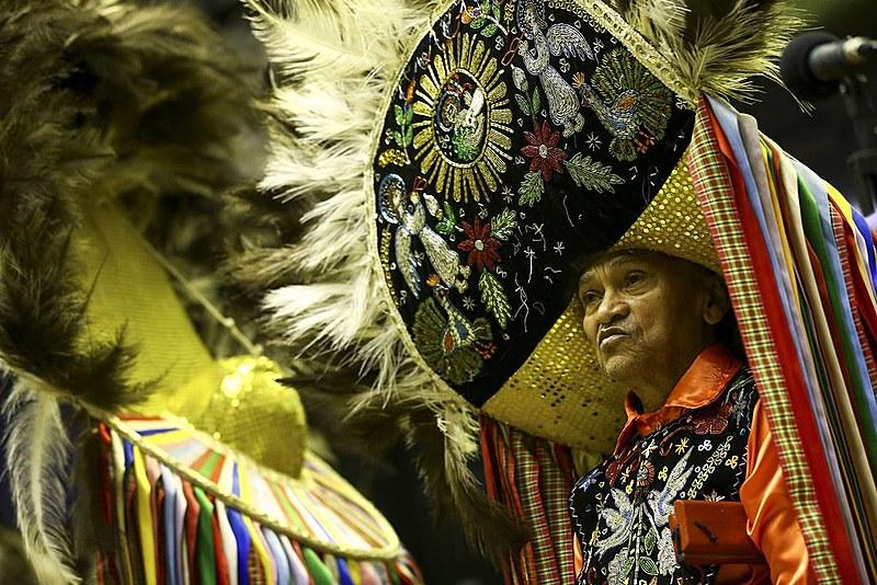 O Complexo Cultural do Bumba Meu Boi é dividido em cinco sotaques principais: Matraca, Orquestra, Zabumba, Costa-de-mão e Baixada