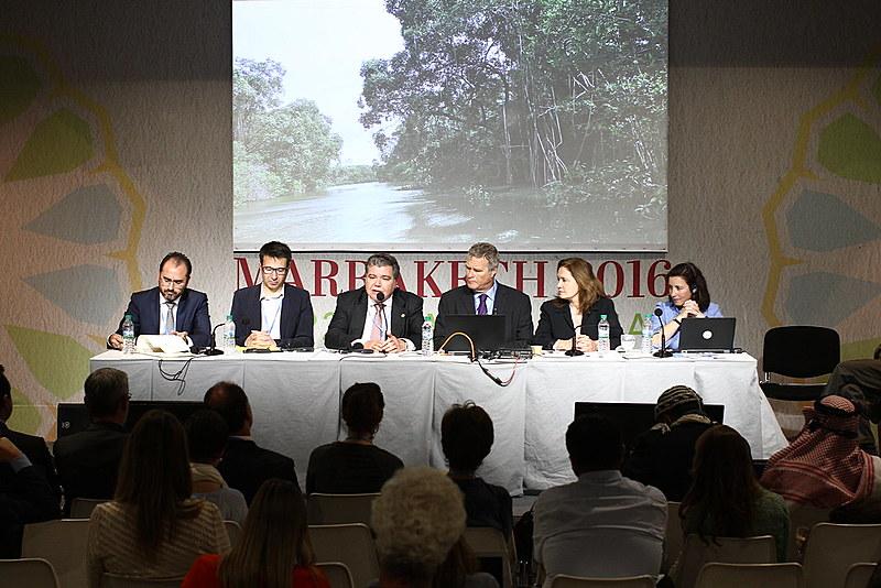 Delegação brasileira discute mercado de créditos de carbono na COP22