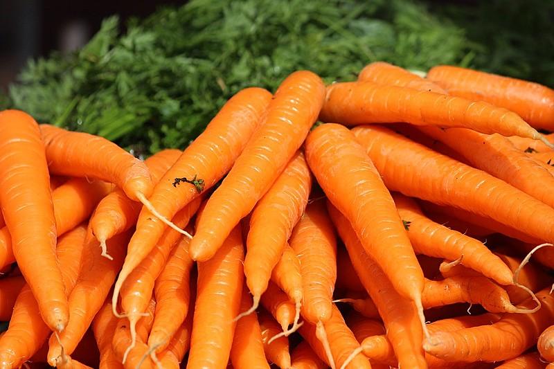 Cenoura é rica em antioxidante betacaroteno