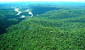 A Reserva Nacional do Cobre possui 47 mil quilômetros quadrados entre os estados do Pará e Amapá