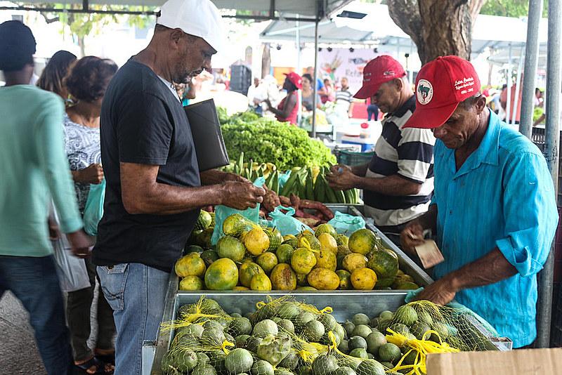 Feiras agroecológicas são realizadas pelo MST em diversas cidades do país