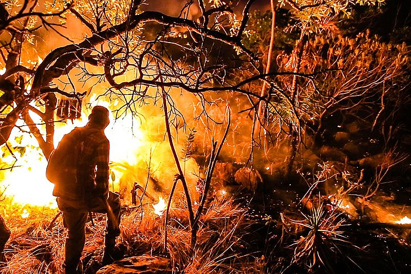 Os cinco responderão por dano a unidades de conservação e áreas de proteção ambiental e associação criminosa