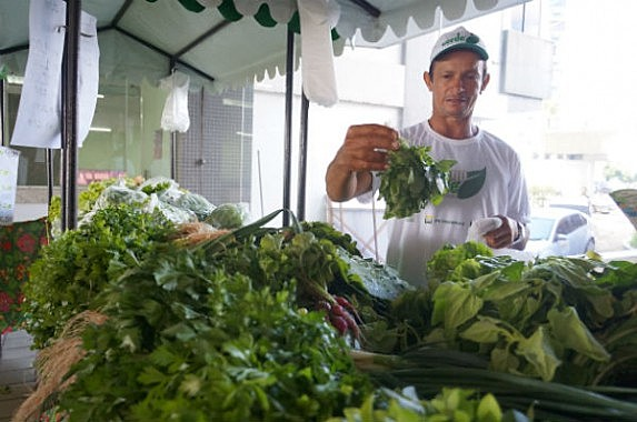 Produções agrícolas da região são conhecidas por serem livres de venenos