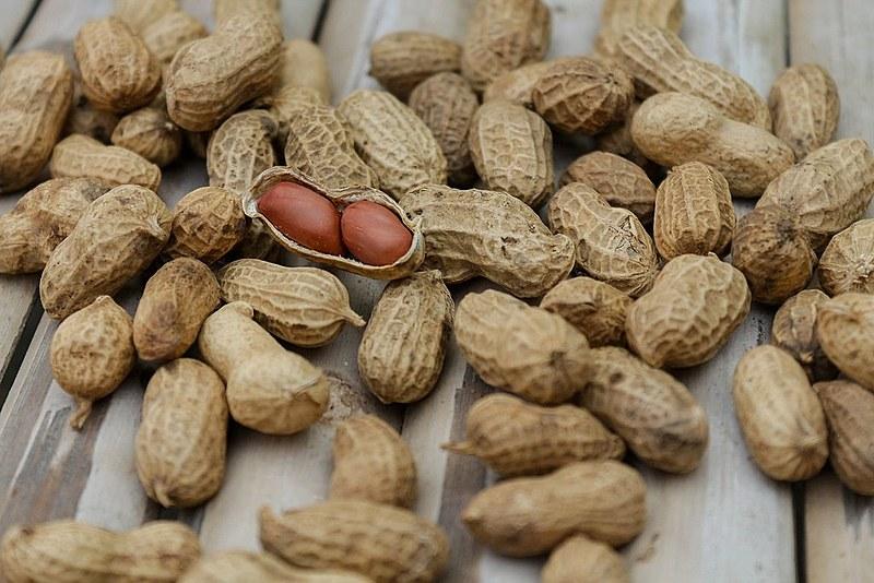 Alimento é rico em ômega 3, vitamina E e o complexo B e está presente em várias receitas brasileiras