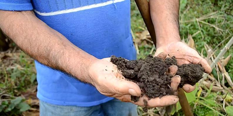"""Com mais de 47 mil visualizações, """"O que é agroecologia"""" lidera a etapa de votação popular do concurso"""