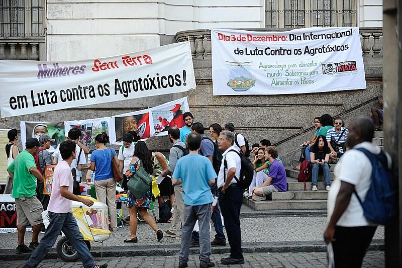 Protesto contra o uso de agrotóxicos em frente a câmara dos vereadores do Rio de Janeiro