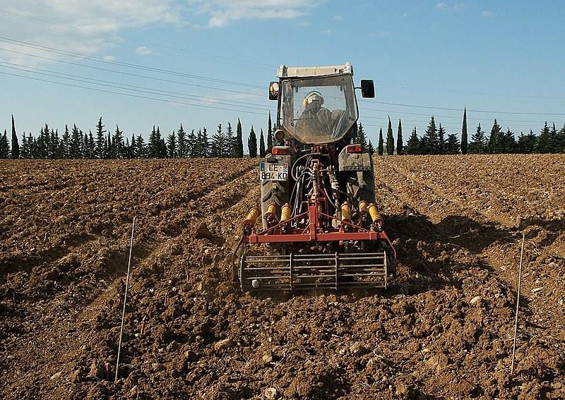"""Agricultura familiar é """"galinha dos ovos de ouro"""" do mercado para as máquinas agrícolas"""
